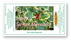Holly Solstice Abundance