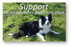 Support for all Creatures